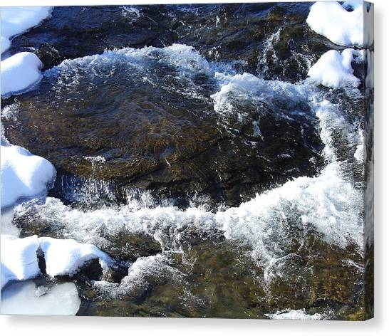 A Chilly Froth Circles A Resting Stone Canvas Print by Terrance DePietro