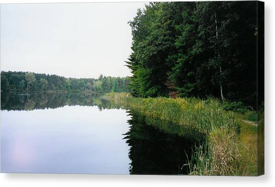 A Clear Day Canvas Print by Tom Hefko