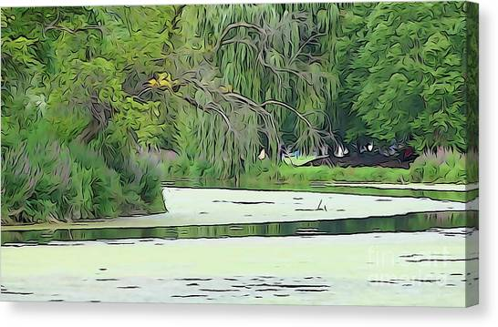 Canvas Print featuring the photograph A Clearer Path by Cj Mainor