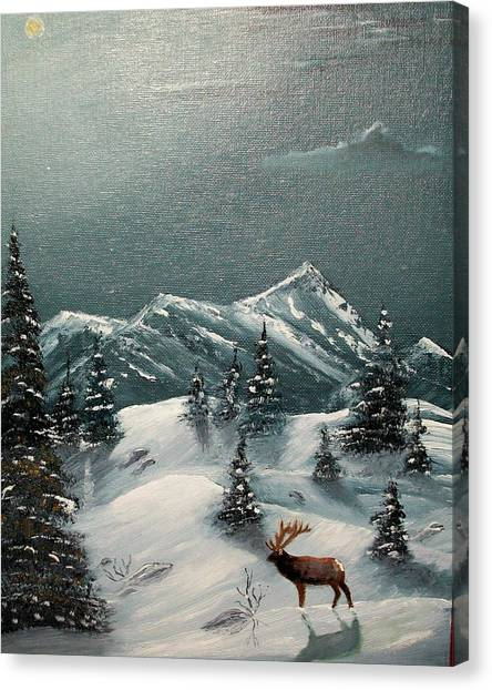A Cold Montana Night Canvas Print