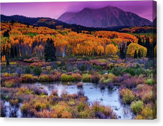 A Colorado Fall Along Kebler Pass Canvas Print