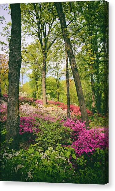 A Colorful Hillside Canvas Print