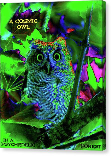 Canvas Print featuring the photograph A Cosmic Owl In A Psychedelic Forest by Ben Upham III