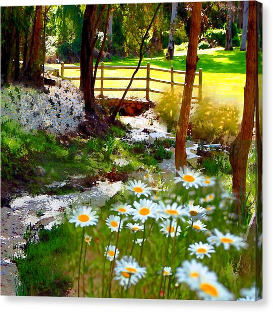 A Country Stream With Wild Daisies Canvas Print