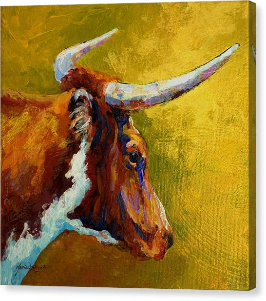 Cow Farms Canvas Print - A Couple Of Pointers - Longhorn Steer by Marion Rose