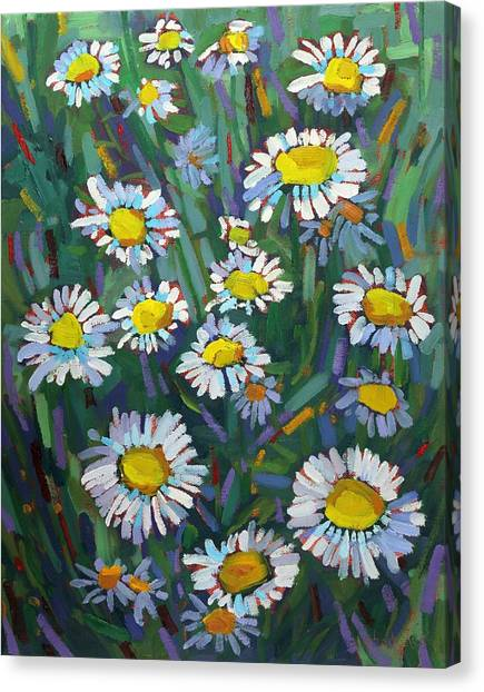 A Daisy A Day Canvas Print