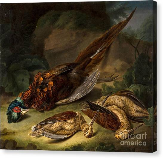 Woodcock Canvas Print - A Dead Pheasant by MotionAge Designs