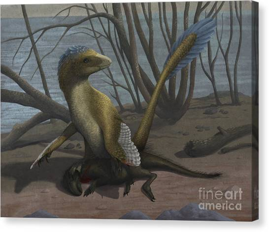 Velociraptor Canvas Print - A Deinonychus Protects Its Kill by Emily Willoughby
