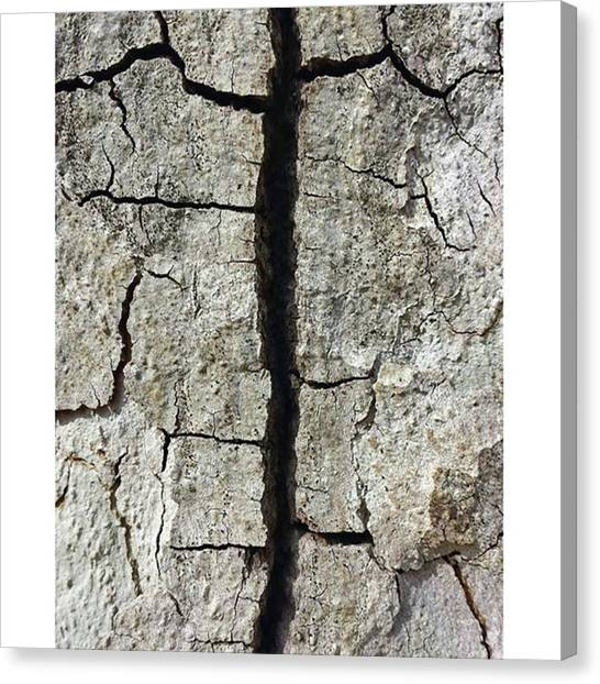 Satellite Canvas Print - A Desert Canyon From Space, A Cracked by The Texturologist