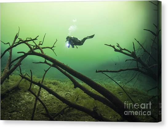 Spelunking Canvas Print - A Diver In The Car Wash Cenote System by Karen Doody