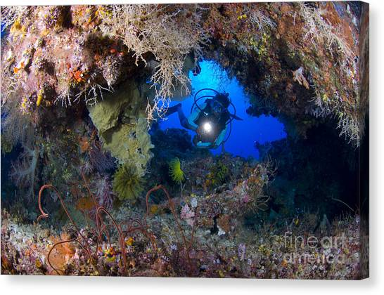 Kimbe Bay Canvas Print - A Diver Peers Through A Coral Encrusted by Steve Jones