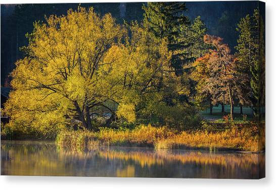 A Fall Day  Canvas Print