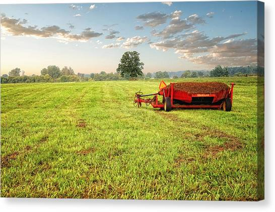 Canvas Print featuring the photograph A Field At Sunrise by Lars Lentz