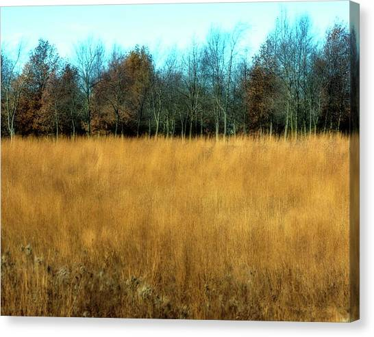 A Field Of Browns Canvas Print