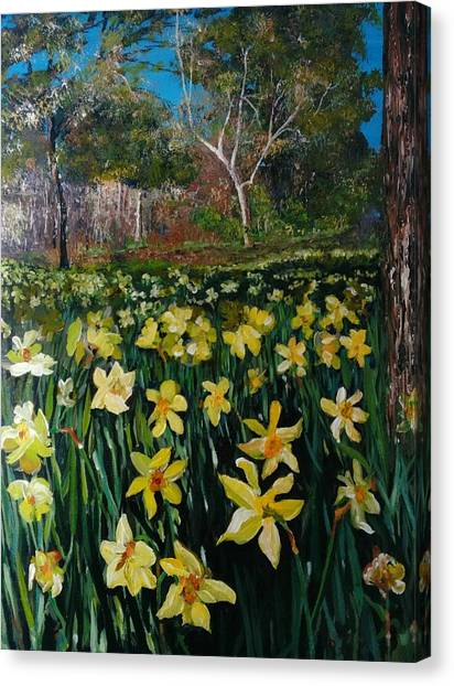 Canvas Print featuring the painting A Field Of Daffodils by Ray Khalife