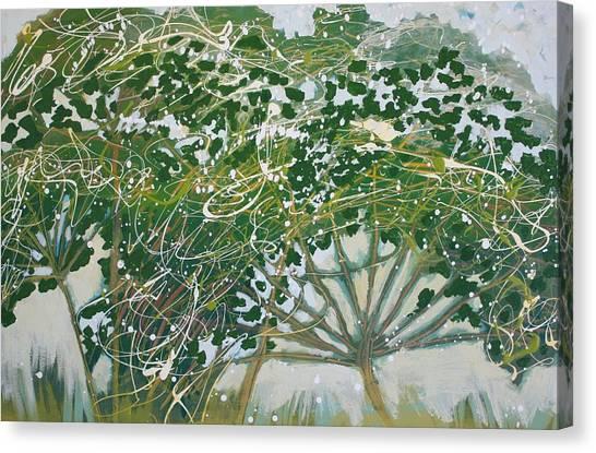 A Field Of Valerian Canvas Print