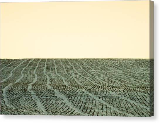 Monticello Canvas Print - A Field Stitched by Todd Klassy
