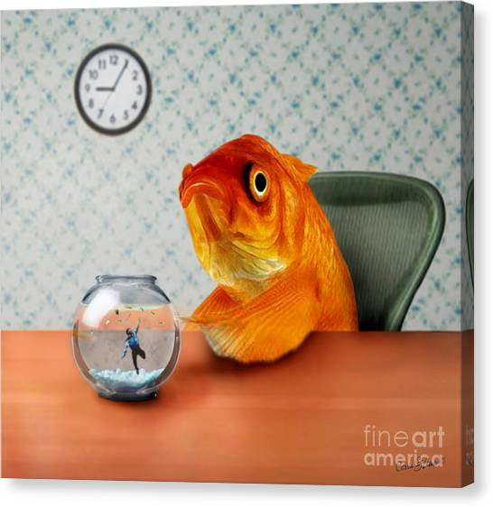 Goldfish Canvas Print - A Fish Out Of Water by Carrie Jackson