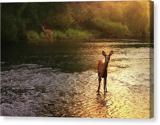 Dusk Canvas Print - A Fleeting Moment by Rob Blair