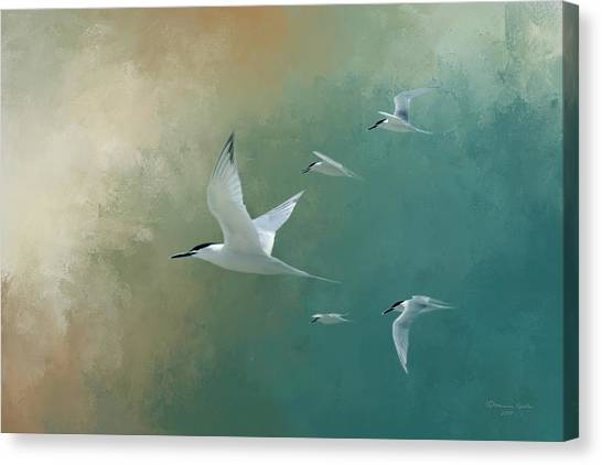 Florida Wildlife Canvas Print - A Flight Of Terns by Marvin Spates