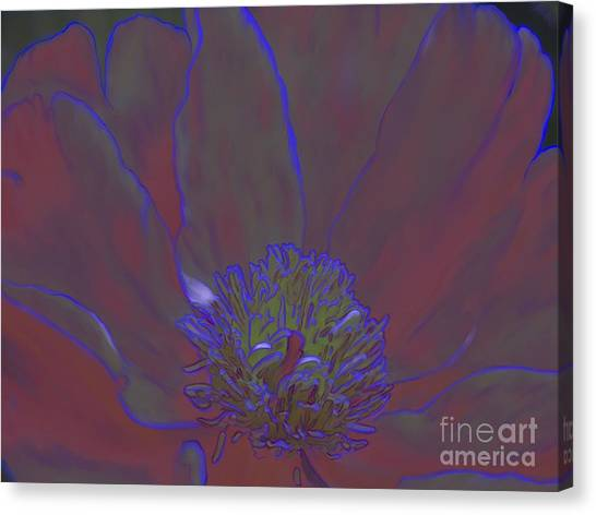 A Flower For Alphonse Canvas Print