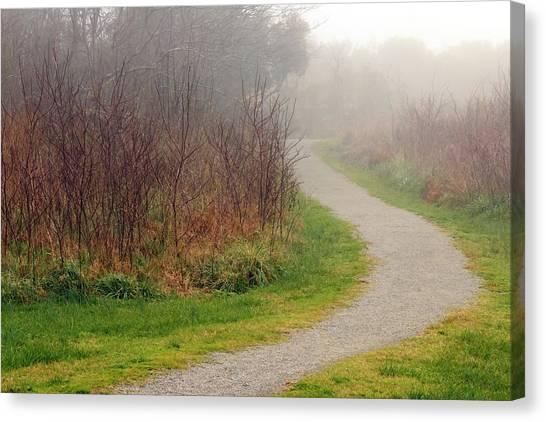 A Foggy Path Canvas Print