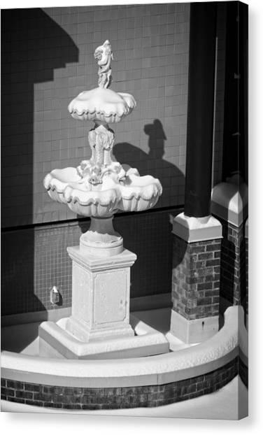A Fountain Of Snow Canvas Print