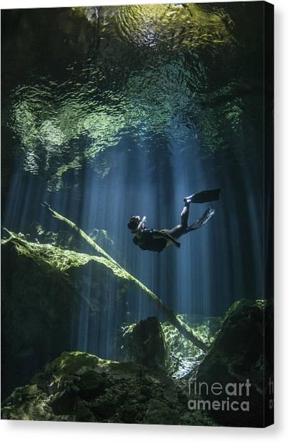 Spelunking Canvas Print - A Freediver In Taj Mahal Cenote by Karen Doody