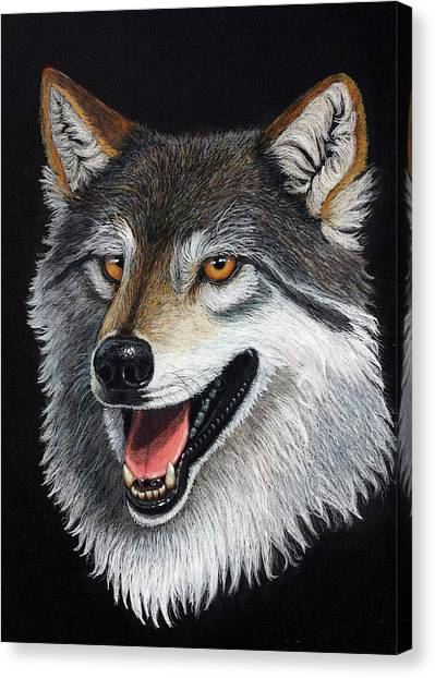 A Friendly Wolf Canvas Print by Lorraine Foster