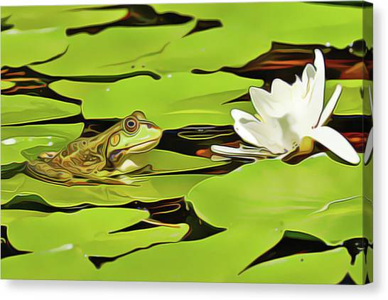 A Frog's Peace Canvas Print