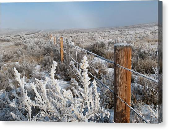 A Frosty And Foggy Morning On The Way To Steamboat Springs Canvas Print