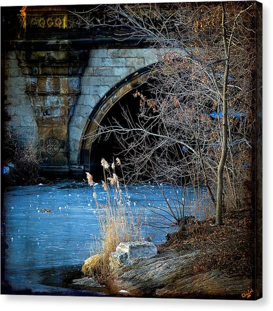 A Frozen Corner In Central Park Canvas Print