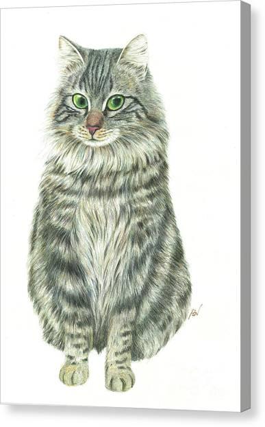 Siberian Cats Canvas Print - A Furry Cat  by Jingfen Hwu