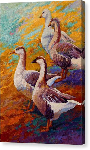 Four Canvas Print - A Gaggle Of Four by Marion Rose