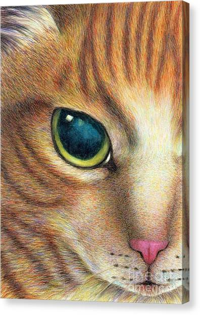 A Ginger Cat Face Canvas Print