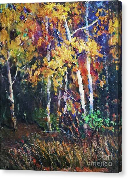 A Glance Of The Woods Canvas Print