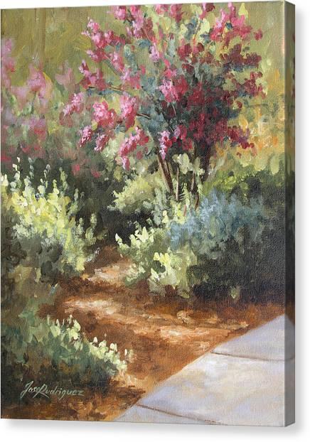 A Golden Walk Canvas Print