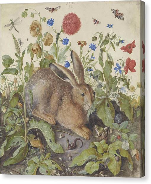 Easter Bunny Canvas Print - A Hare Among Plants by Hans Hoffman