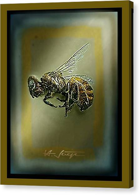 A Humble Bee Remembered Canvas Print