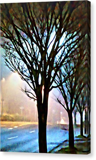 A Light Dusting Of Solitude Canvas Print