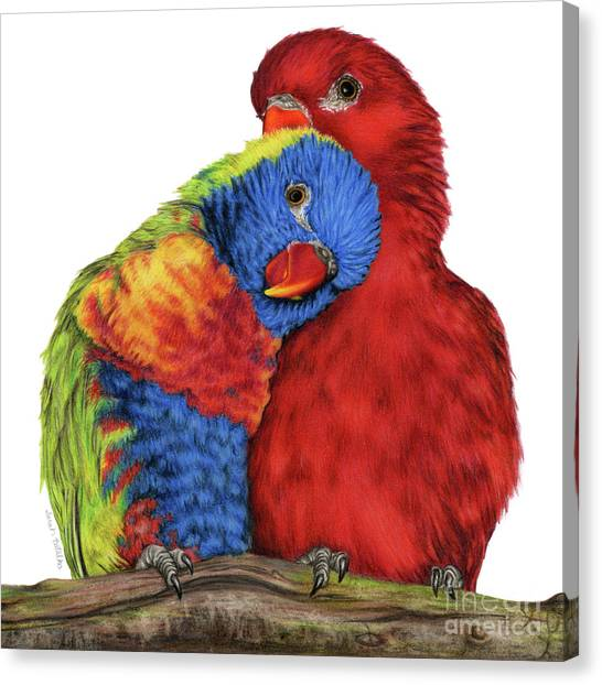 Parakeet Canvas Print - Love Will Keep Us Together by Sarah Batalka