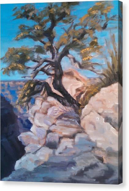 A Lone Tree Canvas Print