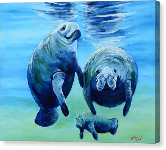 A Manatee Family Canvas Print