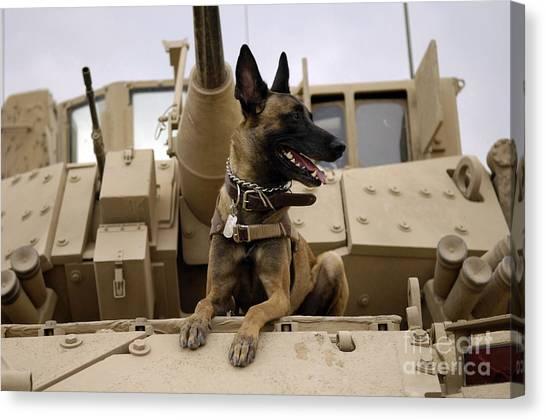 A Military Working Dog Sits On A U.s Canvas Print