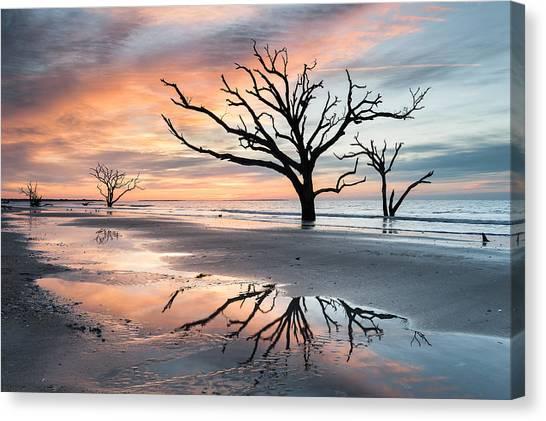Plantation Canvas Print - A Moment Of Reflection - Charleston's Botany Bay Boneyard Beach by Mark VanDyke
