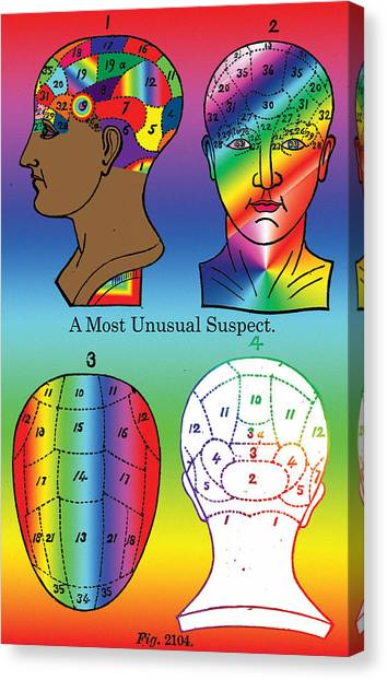 A Most Unusual Suspect Canvas Print