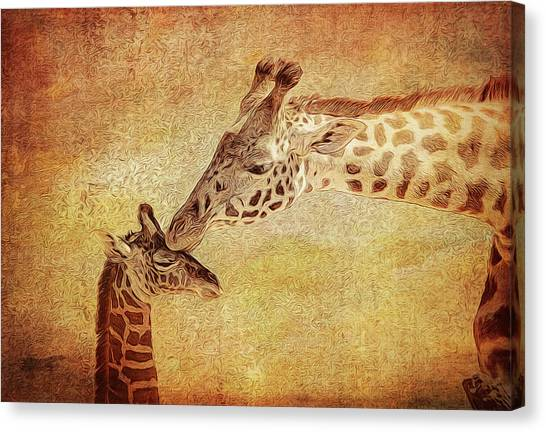 Giraffe Face Canvas Prints (Page #5 of 18) | Fine Art America
