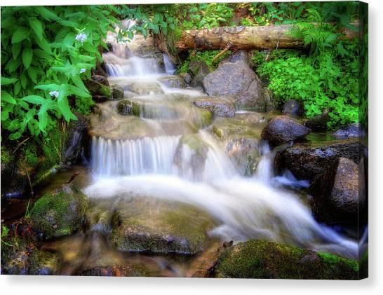A Mountain Stream Pleases Me More Than The Sea Canvas Print