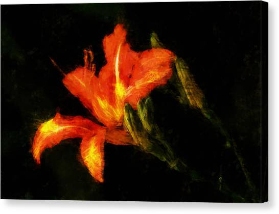 A Painted Lily Canvas Print