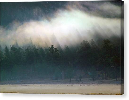 A Patch Of Fog Canvas Print